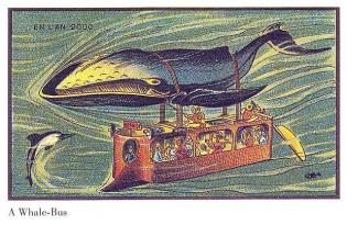 Whale_1581544a