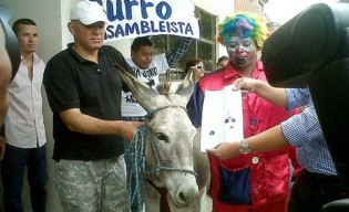 guayas-cne-burro-consejo-Electoral-guayaquil-COMERCIO_ECMIMA20121115_0037_31