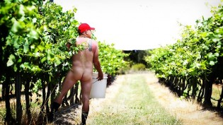 538245-mike-hayes-from-symphony-hill-wines-will-be-making-a-wine-using-traditional-methods