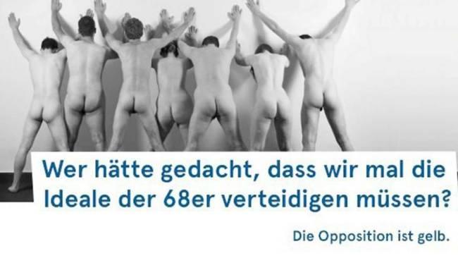 FDP Europa wahl
