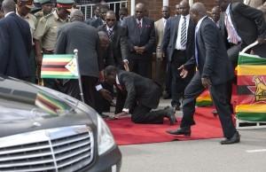 Zimbabwe Mugabe Fall