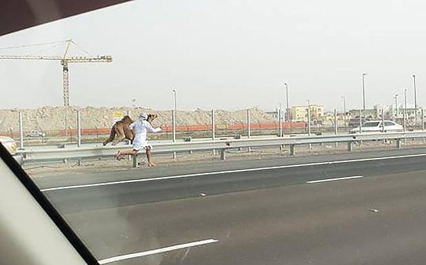 kaamel_man_Abu_Dhab_3283527b