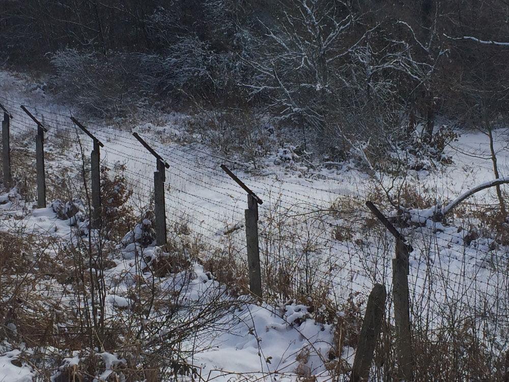 fence bul
