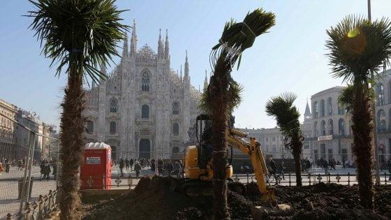地方政黨抗議米蘭大教堂廣場種棕櫚樹