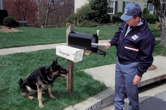 郵差驚狗 德國郵政提供訓練課程
