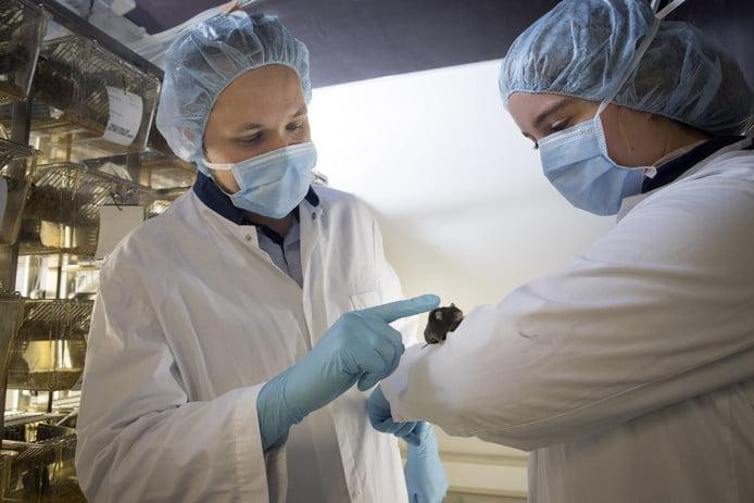 荷蘭大學發現抗衰老療法