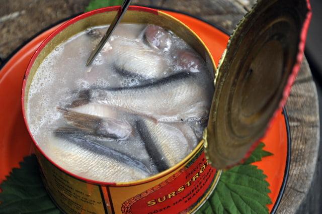 瑞典地方政府機構 接連受到臭魚攻擊
