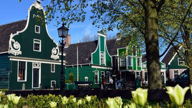 荷蘭風車村 訂立遊客參觀約法三章
