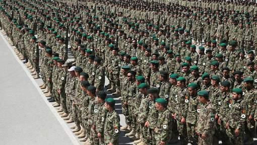 美軍偽裝送阿富汗都無用 國土得2.1%森林可以應用