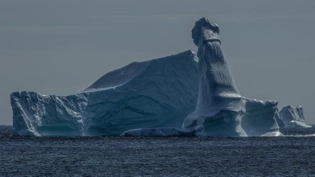 加拿大攝影師捕捉冰山變巨J 驚呼「大自然發聲了」