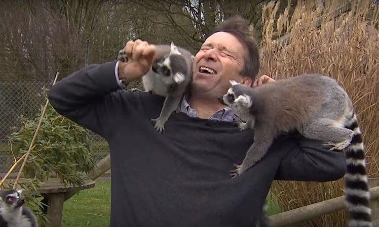 BBC 記者拍動物園新聞 搞到俾狐猴襲擊手指仲要被咬