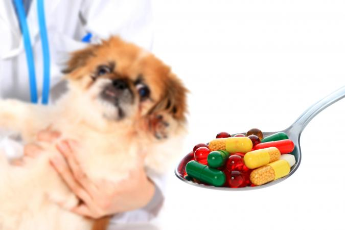 委內瑞拉抗生素緊缺 公立醫院醫生話食住動物用藥好過無得食