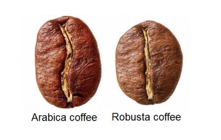 英國調查:有聲稱100%純阿拉伯豆品牌 其實混入硬豆咖啡