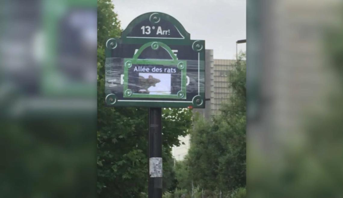 巴黎區域鼠患嚴重 居民要改路名「鼠患大道」 抗議?