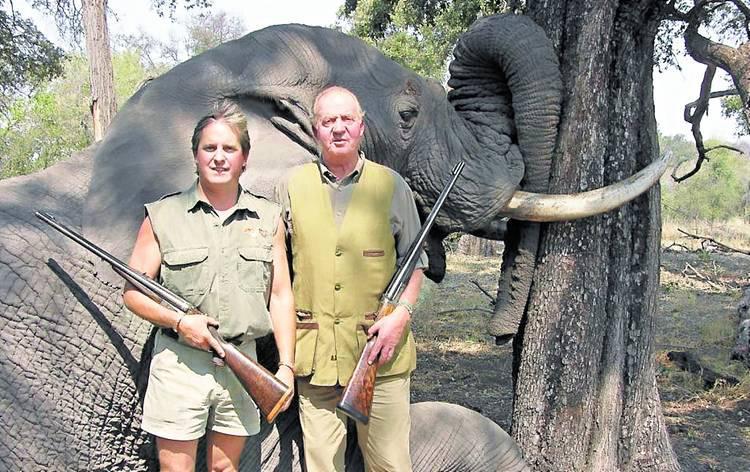 納米比亞政府表示 大象selfie影響形象