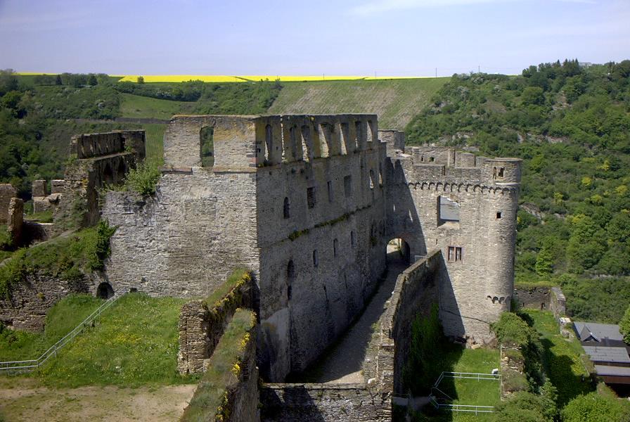 普魯士王室後代 控告德國政府侵佔宮廷城堡廢墟
