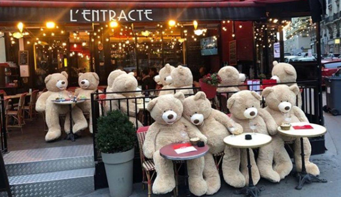 巨熊襲擊巴黎街區cafe 希望大家搭台傾計?