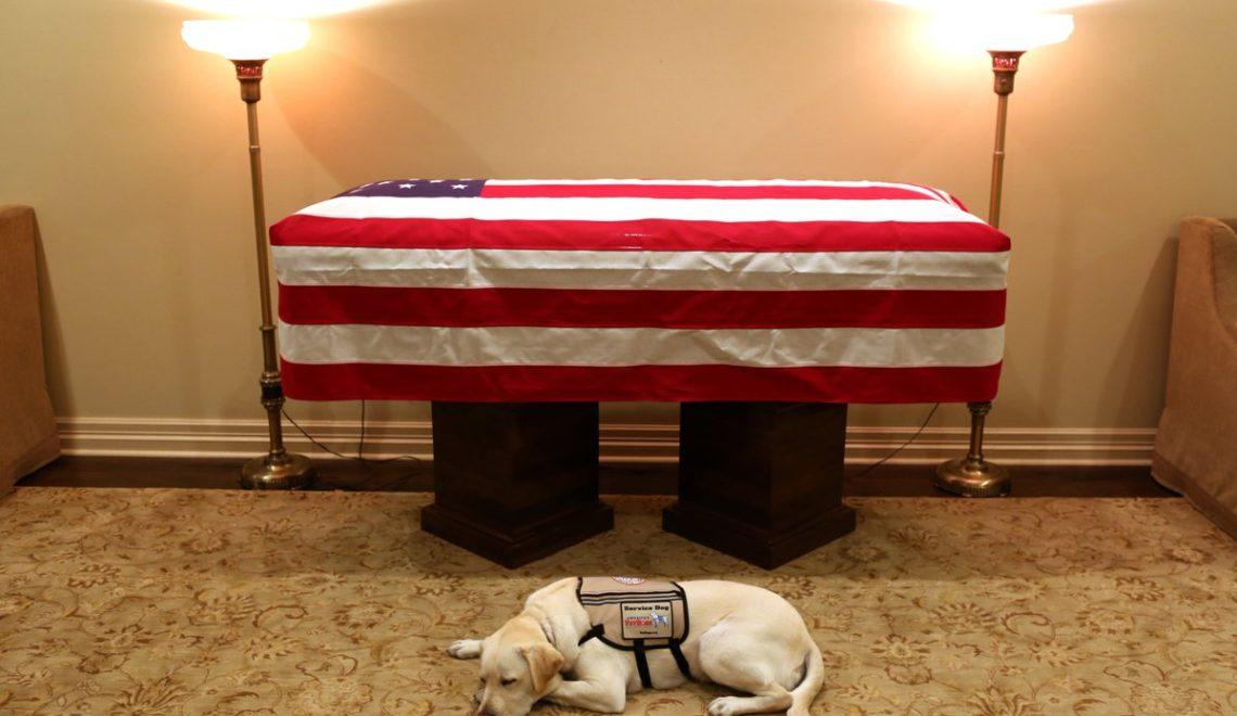 最後陪伴老布殊忠犬陪伴前總統到最後一刻 圖片感動流出