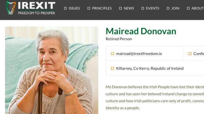 歐洲議會選舉 愛爾蘭出現神祕一人脫歐黨?