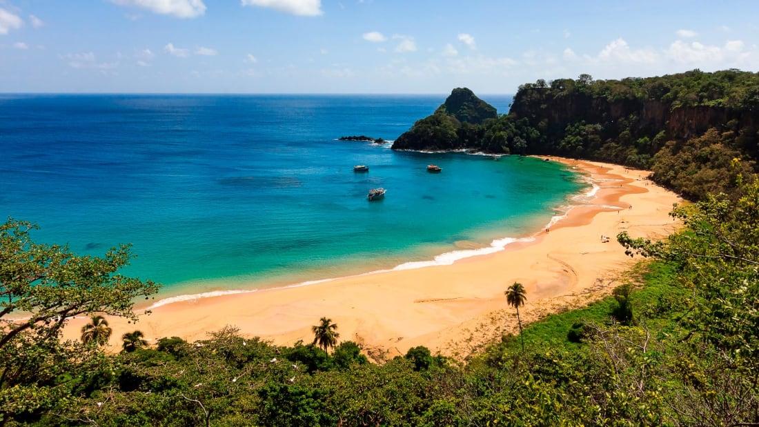 巴西離島開放旅遊 中武漢肺炎先去得?