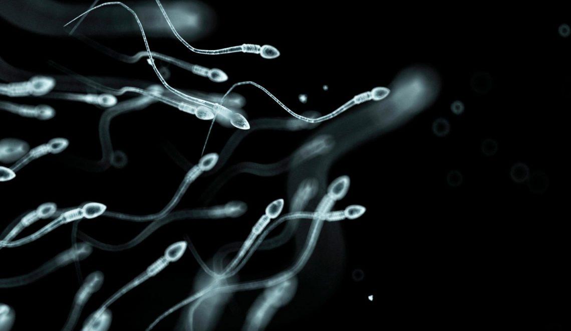 以色列研究:武漢肺炎重症會導致男子精子量減半