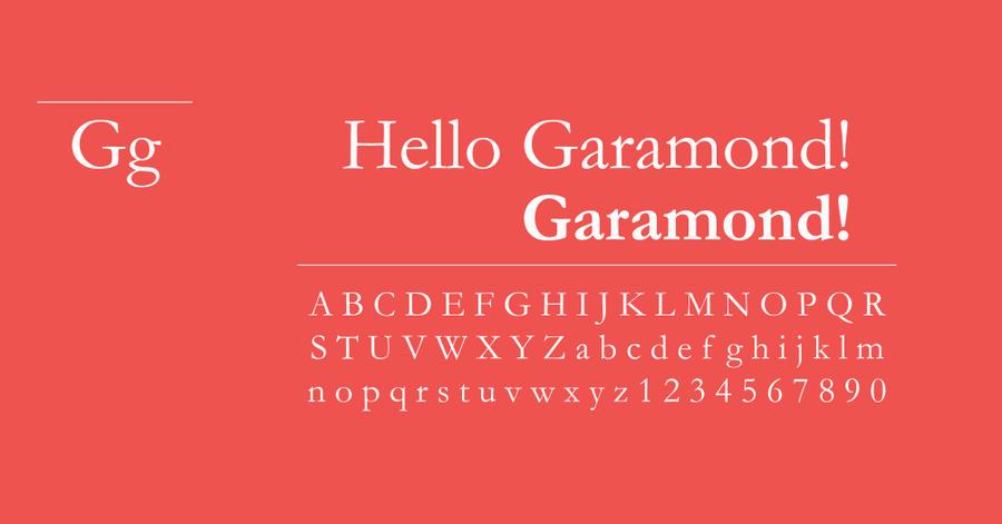 華府上訴法庭禁止 Garamont 但 Times New Roman 可以變